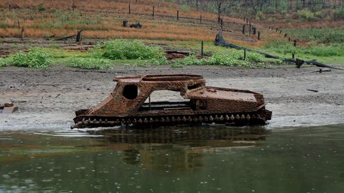 It's believed the WWII tank was used for land-clearing by local farmers.