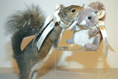 "Pics via <a href=""http://www.buzzfeed.com/peggy/animals-with-stuffed-animals-of-themselves"">Buzzfeed</a>"