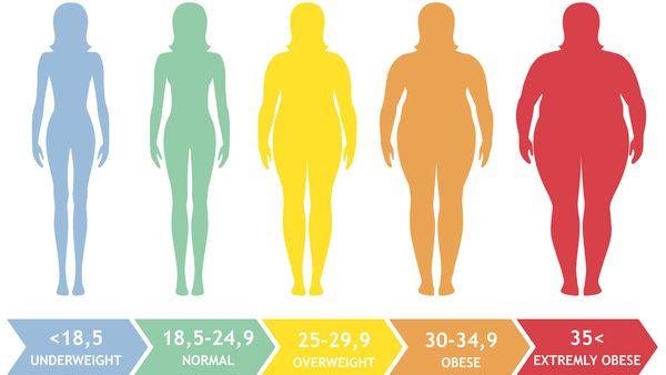 24 bmi Normal Weight