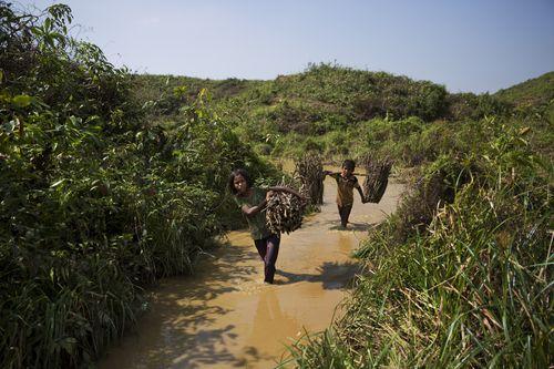 Rohingya Muslim children walk through a stream carrying firewood near Kutupalong refugee camp, Bangladesh. (AAP)