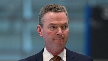 Christopher Pyne apologises for 'damaging' same-sex marriage remarks