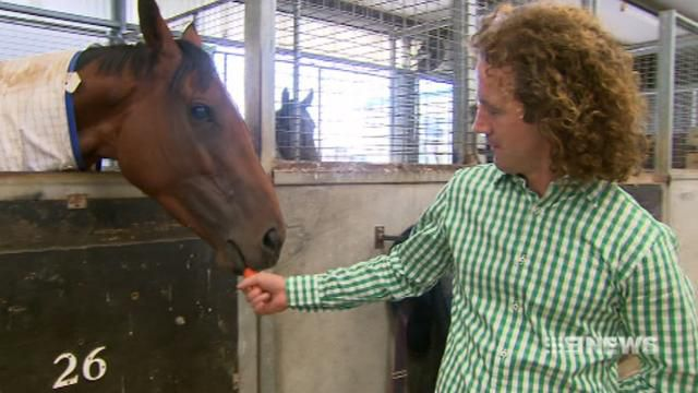 Trainer tips Jameka to win Melbourne Cup