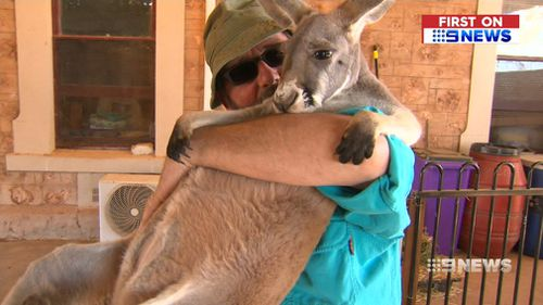 The couple is now fundraising to buy and install a backup generator. (9NEWS)