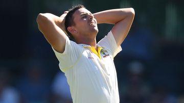 Australian cricket world cup squad Josh Hazlewood sport news