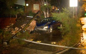 Police searching for Sydney driver who crashed into light pole and fled