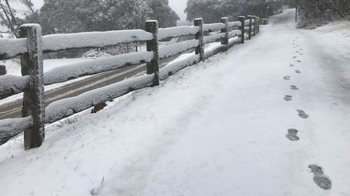 Nearly five centimetres of snow dusted Mount Buller yesterday. (Mount Buller Facebook)