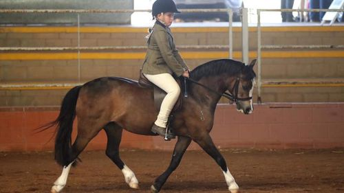 Queensland girl critical in induced coma after falling from horse