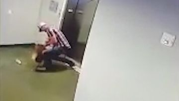 Man saves dog stuck in elevator