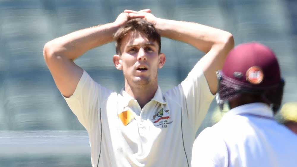 Mitchell Marsh. (AAP)