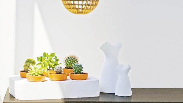 Handy woman: make your own indoor garden box