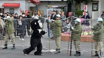 A 'gorilla' broke out of the Ueno Zoo in February 2014.