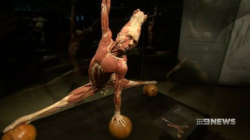 The exhibit shows the impact modern living has on the human body.