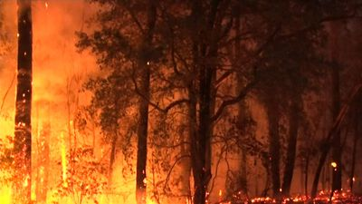 Crews battle 79 winter bushfires across NSW