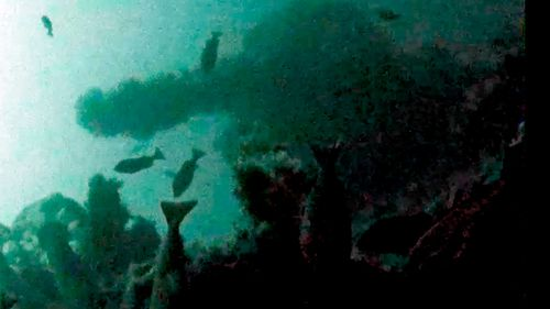 This underwater image shows a gun turret of the USS Abner Read.