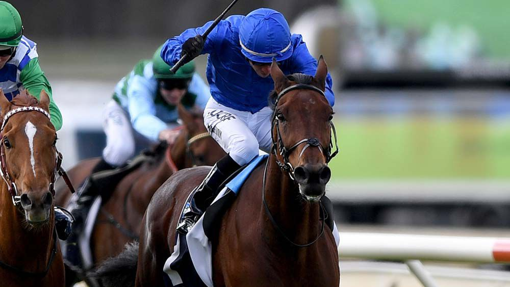 Qewy ruled out of Melbourne Cup