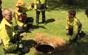 Full-scale rescue mission launched after barking heard in Adelaide drain