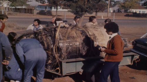The Shire of Esperance has marked 40 years since a NASA spacecraft crashed down to earth.