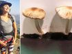 Woman renter falls ill after mushrooms appear on walls