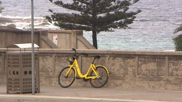 Ofo bike-sharing company is set to close in Australia within the next 60 days. Picture: 9NEWS
