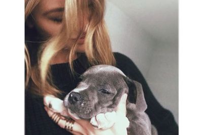 Jesinta's puppy Axel is even more photogenic than she is!