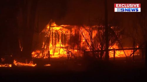 Fire crews watched on last night as a tree goes up in flames in Victoria's southwest. (9NEWS)
