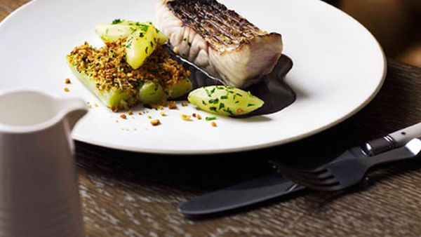 Grilled and poached wild barramundi with red wine sauce