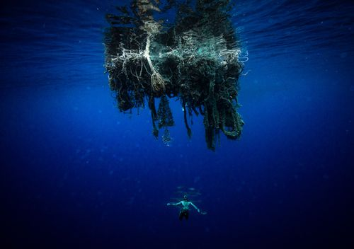 Large chunks of ghost netting was a common sight for Ben. As well as potentially trapping and killing marine life, the floating debris had sometimes transformed into an eerie mini-ecosystem.