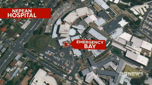 The man remains stable in hospital in a coma after brandishing knives in the emergency department of  Nepean hospital.