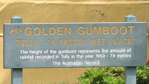 The Golden Gumboot was installed in Tully in 2003. (9NEWS)