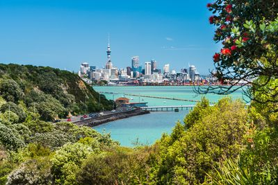 <strong>3. Auckland</strong>