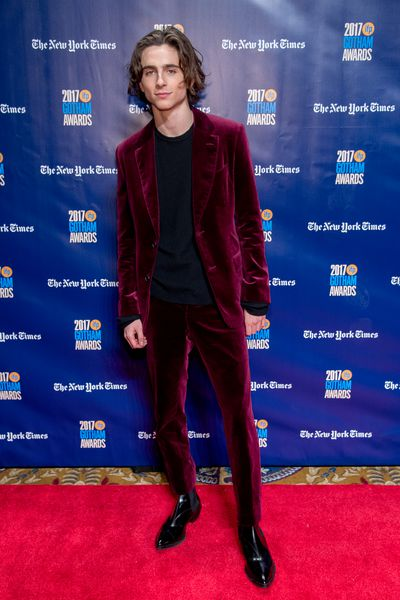 Timothée Chalamet in Berluti at the 2017 Gotham Awards