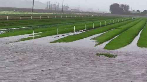 Flood warning for river in Victoria's east Gippsland region as heavy rain continues