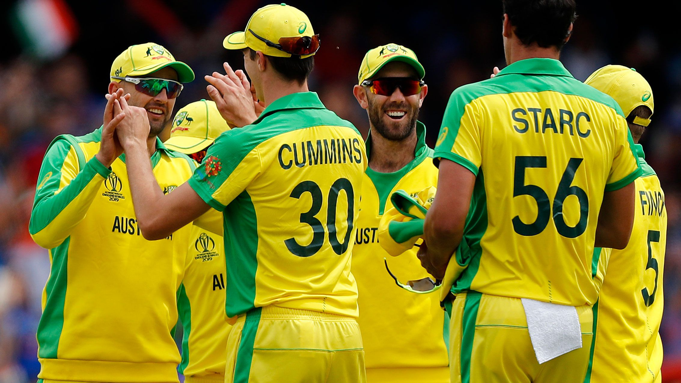 Nathan Lyon celebrates a wicket with Pat Cummins.