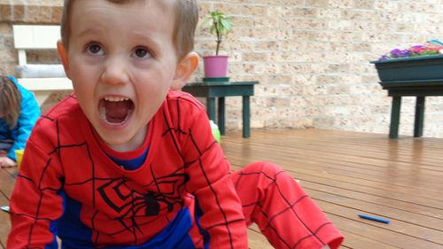 Missing boy William Tyrell was last seen in his grandmother's front yard wearing a Spiderman outfit. (Supplied, NSW Police)