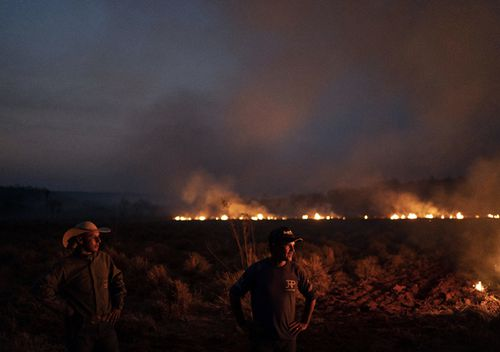 Neri dos Santos Silva, centre, watches an encroaching fire threat after digging trenches to keep the flames from spreading to the farm he works on, in the Nova Santa Helena municipality, in the state of Mato Grosso, Brazi. Under increasing international pressure to contain fires sweeping parts of the Amazon, Brazilian President Jair Bolsonaro on Friday authorised use of the military to battle the massive blazes.