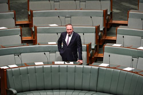 The former National Party leader said he felt he was 'unravelling' during the highly-publicised marriage break-up debacle. Picture: AAP.