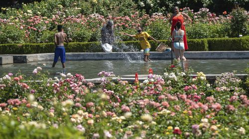 While the city reached a record temperature of over 110 degrees, people gathered at Peninsula Park to cool off, Portland, Oregon.