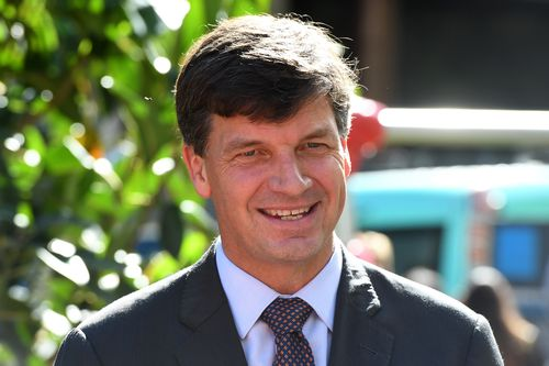 "Angus Taylor said because of the national amnesty ""every Australian will be more safe and more secure"" (AAP Image/Dean Lewins)"