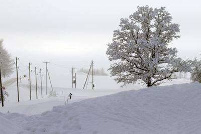 17 January, 2016 - A ski-runner in Sigulda, Latvia. (EPA/Valda Kalnina)