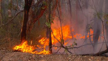 A Victorian man has been charged over allegedly lighting fires inn southern NSW as Australia faces a bushfire crisis.