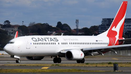 Qantas is checking its Boeing 737 fleet for cracks.