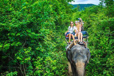 5. Animal tourism