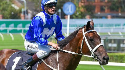 Champion mare Winx.