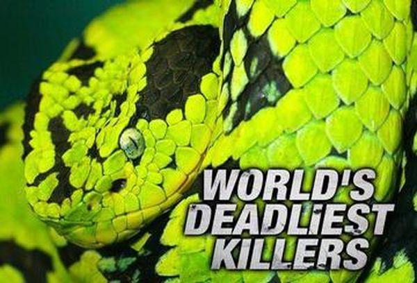 World's Deadliest Killers