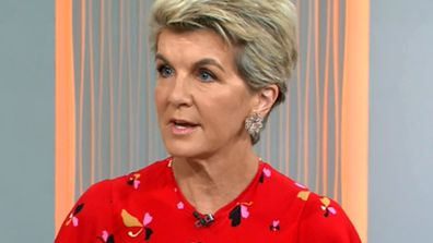 Julie Bishop said that bushfire focus should be on people, not politics