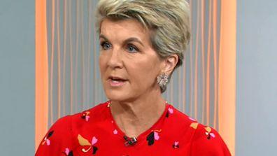 Julie Bishop said that bushfire focus should be on people, not politics