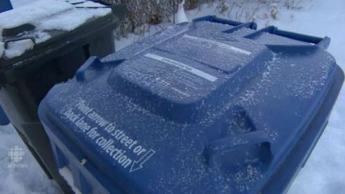 Canadian teen charged after dumping toddler in bin in sub-zero conditions