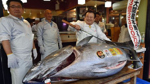 Kiyoshi Kimura, president of sushi restaurant chain Sushi-Zanmai, displays the record-setting tuna at his main restaurant in Tokyo.