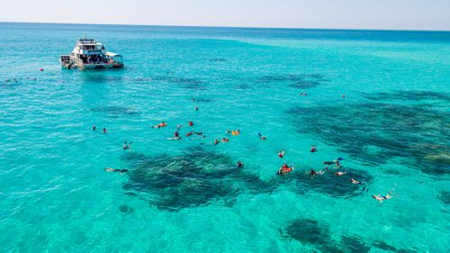 Snorkeling at Upolo Cay, which is part of the Great Barrier Reef