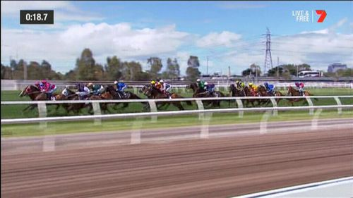 The Melbourne Cup is the race that stops a nation.